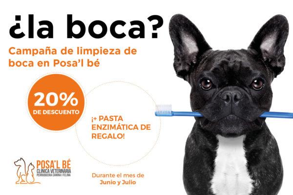Campaña higiene dental